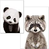 artpin Poster Kinderzimmer - A4 Bilder Für Babyzimmer Ohne Rahmen - Waldtiere Panda Waschbär (P21)