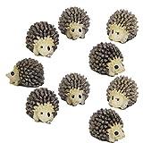 51mxzzbn QL. SL160  - PANYTOW 10pcs Miniature Landscape Garden Decor Hedgehog Ornaments