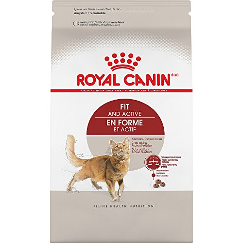 ROYAL CANIN FELINE HEALTH NUTRITION Adult Fit 32 dry cat food, 7-Pound by Royal Canin