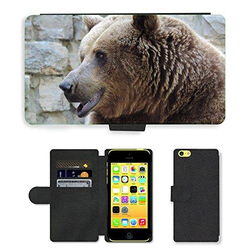 Just Mobile pour Hot Style Téléphone portable étui portefeuille en cuir PU avec fente pour carte//m00138188Brown Bear Zoo Ours animal Mammifère//Apple iPhone 5C