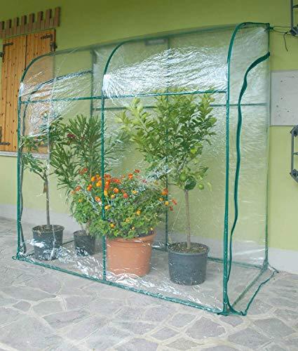 Serra da giardino a parete in acciaio con telo rama oleander verde