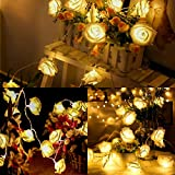 Rose Flower Fairy Lichterketten 3M 30LED Batt...Vergleich