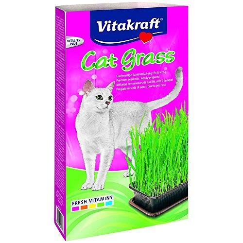 Vitakraft Katzengras (120 g) (Grün) - Grüne Erde Textilien
