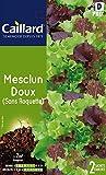 Caillard PFCC13723 Graines de Mesclun Doux sans Roquette
