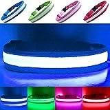 """PetSol Collar de Seguridad para Perros con LED Recargable (Mayor Seguridad y Visibilidad Extrema) X-Grande (60 cm - 70 cm / 23.6"""" - 27.6"""") Azul"""