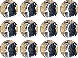 Staffordshire Bull Terrier (Rouge) # comestible pour gâteaux (12de 38mm 3,8cm) # 242