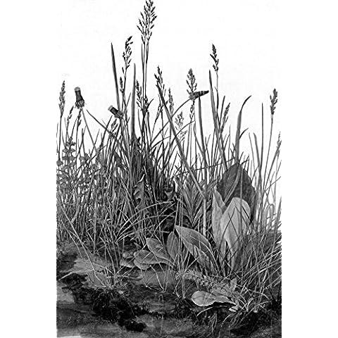 Bilderdepot24 Fotomurale autoadesivo Fototapete Albrecht Dürer - Antichi Maestri