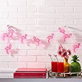 Best Improvements String Lights - willway Set of 10 LED Battery-Operated Flamingo Lights Review