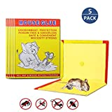 Amitasha Rat Traps Mouse Glue Pad for Home (Pack of 5)