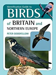 Identification Guide to Birds of Britain & Northern Europe by Peter Goodfellow (2012-11-01)