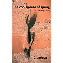 The Cool Breeze of Spring - A new beginning