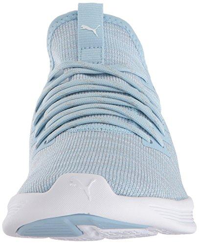 PUMA Women s Ignite Flash Evoknit Sneaker  Cerulean-Quarry White  8 M US