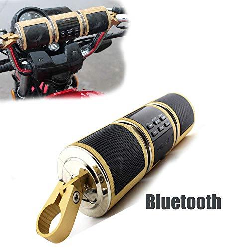LICIDI Powersport-Lautsprecher, wasserdichter 12-V-HiFi-Motorrad-Bluetooth-Lautsprecher mit FM-Radio-Stereo-Soundsystem für ATV-Fernalarm-MP3-Player,Metallic