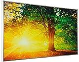 Infrarotheizung Bildheizung 600Watt SOMMERANGEBOT von InfrarotPro ® Made in Germany 7 JAHRE GARANTIE - 39 Elektroheizung Infrarotheizkörper
