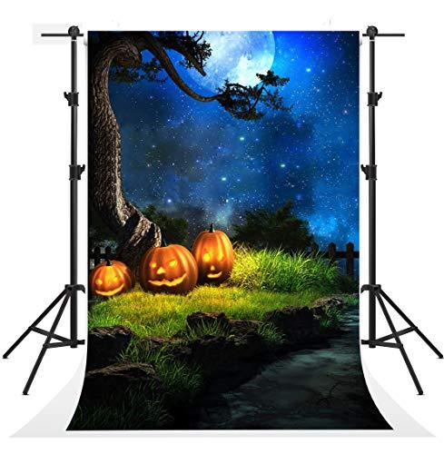 Kate 6.5x10ft Halloween Nacht Fotografie Kulissen Blauer Himmel Mond Hintergrund Foto Kürbis Hintergrund Booth (Kate Halloween Prinzessin)