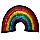 La Bandera Lesbiana Lesbiana Del Arco Iris Del Orgullo Gay El Appliques Retro Del Amor LGBT Bordó El Hierro En Cosido En El Remiendo