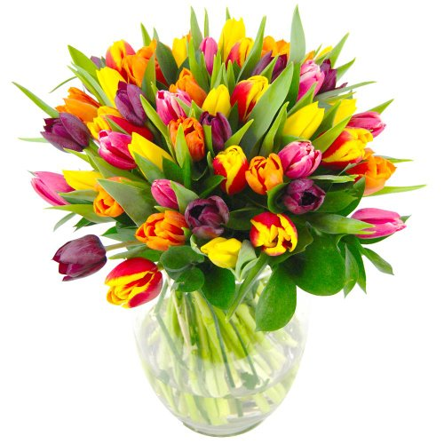 clare-florist-mixed-tulips-fresh-flower-bouquet