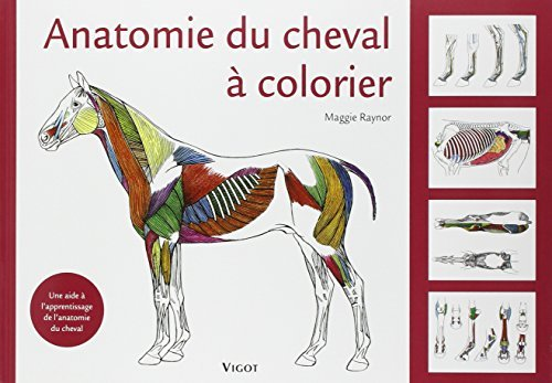 Anatomie du cheval ? colorier by Maggie Raynor