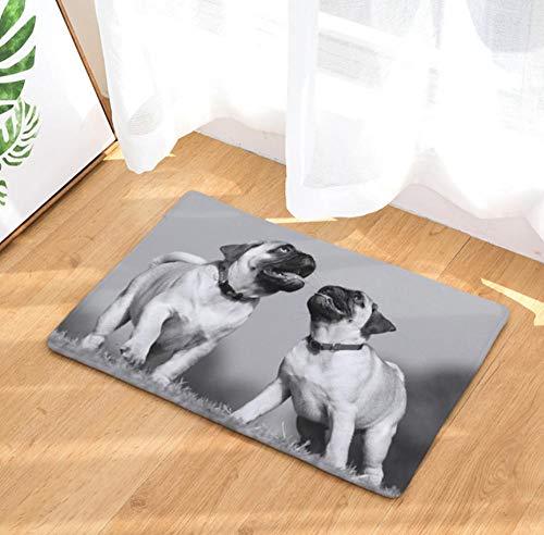sasdasld Modern Style Dog Print Teppiche Anti-Rutsch-Bodenmatte Outdoor Teppiche schwarz und weiß Haustürmatten-50x80CM
