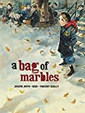A Bag of Marbles: The Graphic Novel by Joseph Joffo (2013-08-01)