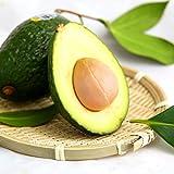 10 Stück Avocado Samen Grün Obst sehr lecker Persea americana Mühle Pear Samen leicht anzubauen, Fruchtsamen für Hausgarten Pflanze