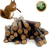 Mrli Pet 100 Gram Organic Apple Sticks Pet Snacks Bonus For Chinchilla Squirrel Rabbits Guinea Pigs Rabbits Hamster Parrot Bird And Other Small Animals Chew Toys And Food