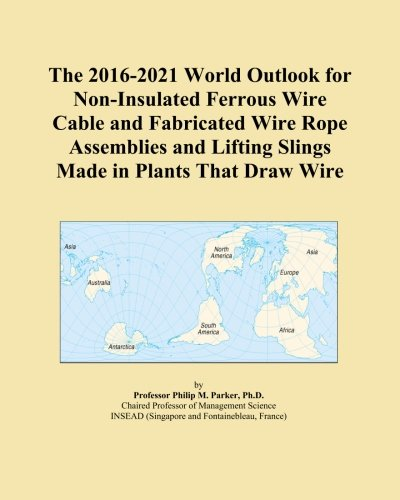 Sling Assembly (The 2016-2021 World Outlook for Non-Insulated Ferrous Wire Cable and Fabricated Wire Rope Assemblies and Lifting Slings Made in Plants That Draw Wire)