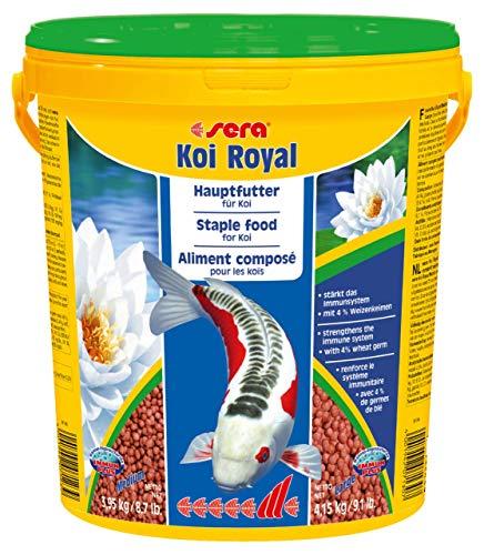 sera 07123 KOI ROYAL MEDIUM 21 l - Hauptfutter für ein ausgewogenes Wachstum von Koi zwischen 12 und 25 cm -
