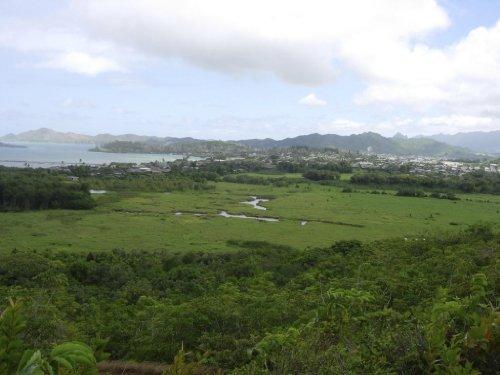 ¡Como Comprar Tierra Barata en Hawai!