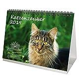 Katzenzauber · DIN A5 · Premium Tischkalender/Kalender 2019 · Katzen · Haustier · Stubentiger · Katzenbaby · Tier · Geschenk-Set mit 1 Grußkarte und 1 Weihnachtskarte · Edition Seelenzauber