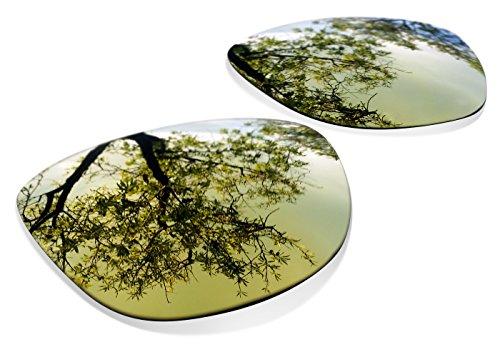 sunglasses restorer Kompatibel Ersatzgläser für Oakley Frogskins, Polarized Gold 24K Linsen