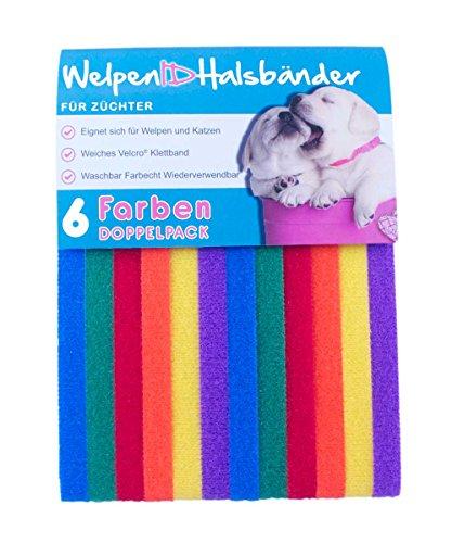 6 WelpenIDHalsbänder - Doppelpack - Brights / Standard 34cm