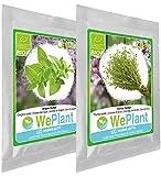 BIO Origan & Thym - Graines de plantes aromatiques/Intérieur & Extérieur