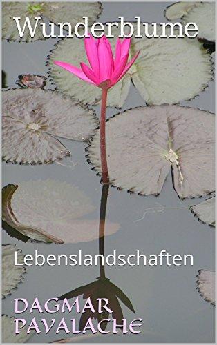Wunderblume: Lebenslandschaften