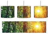 Wald bei Sonnenlicht inkl. Lampenfassung E27, Lampe mit Motivdruck, tolle Deckenlampe, Hängelampe, Pendelleuchte - Durchmesser 30cm - Dekoration mit Licht ideal für Wohnzimmer, Kinderzimmer, Schlafzimmer