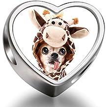 Rarelove Sterling Silver Cute Chihuahua Dog with Giraffe Costume Animal Heart Photo European Charm
