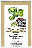 Samen - Saatgutsortiment - Set - Mischung - Mix - Salatbeet 2-12 Sorten - ca. 3.150 Samen