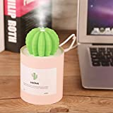 Mini Portable Prickly Pear Air Humidifier 280ml USB Powered Air Purifier Diffuser Fresher Cool Mist Maker Fogger for Skin Moisturing, Bedroom, Office, Car, Travel(Pink)
