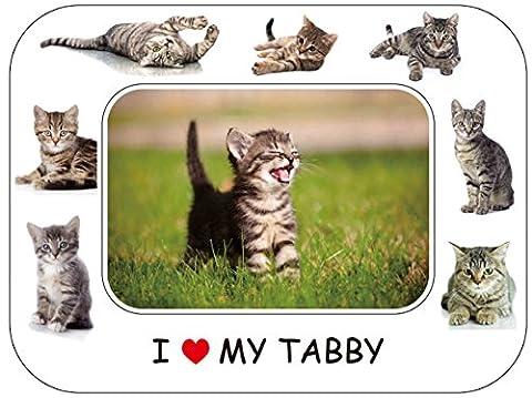 Chat tigré–Cadeau superbe 20,3x 15,2cm Cadre photo magnétique/Aimant pour réfrigérateur