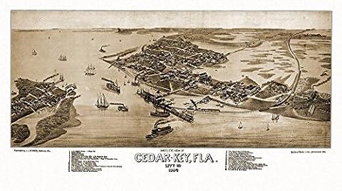 Old Map of Cedar-Key Florida 1884 Levy County Fine Art