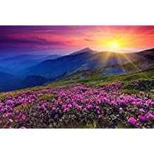 (Sunrise Mountains Flowers Grass Dawn)Print Posters Art Printed Canvas Posters 16x24inch