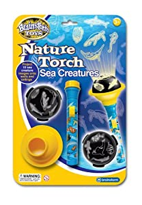 Brainstorm Toys Nature Torch Sea Creatures by Brainstorm