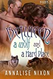 Between a Wolf and a Hard Place- Part 3: BBW Shifter Menage (Bewtween a Wolf and a Hard Place) (English Edition)