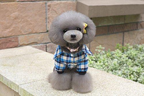 duoze-lautunno-e-linverno-animale-domestico-teddy-bichon-vestiti-orso-plaidblue-xxl
