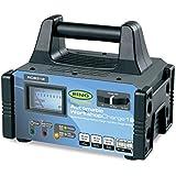Bague rcb31212Amp Atelier Chargeur de batterie 6V 12V