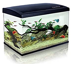 Classica Eco 60 Aquarium 63l Fish Tank Kit Led Lighting, Filter, Free Heater For Tropical Or Marine