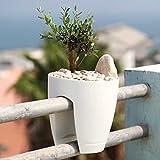 3 STÜCK ZUM PREIS VON 2 STÜCK--GRENNBO Planter --Blumenkasten aus Kunstoff-Balkonkasten Balkonpflanzkasten Balkon-Verschiedene Farben zur Auswahl (keine Halterung notwendig) (Weiß)