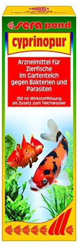 Sera 07450 pond cyprinopur 250 ml - Arzneimittel für Zierfische mit Breitbandwirkung gegen häufige Erkrankungen im Teich