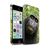 Stuff4 Clipser Brillant Coque de Coque pour Apple iPhone 5C / Selfie Babouin...