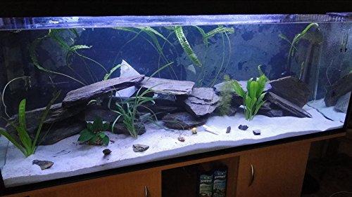 40 Kg Natural Black Slate Set Of Stones For An Aquarium